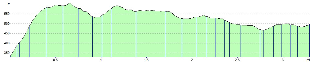 Stone Cat Elevation Profile : Cefn bryn walking route