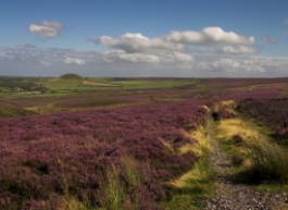 The North York Moors