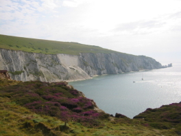 &nbsp The Needles